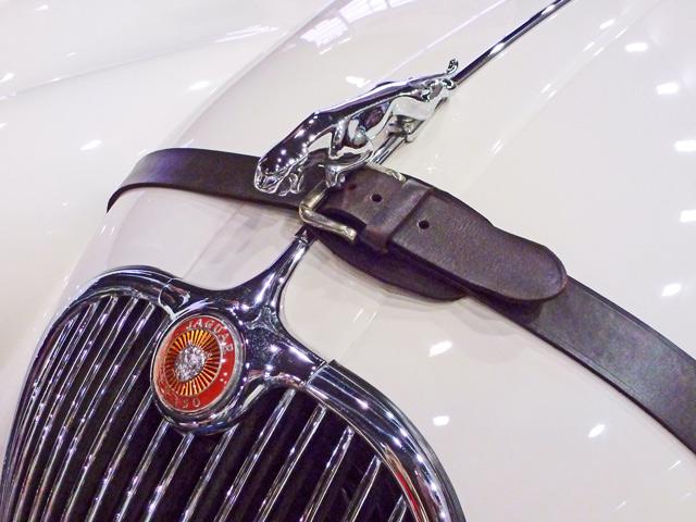 Riemen-Jaguar-02.jpg