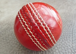 Lederball-Cricket-001.jpg