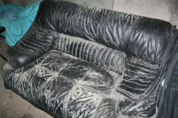 schimmel das lederlexikon. Black Bedroom Furniture Sets. Home Design Ideas